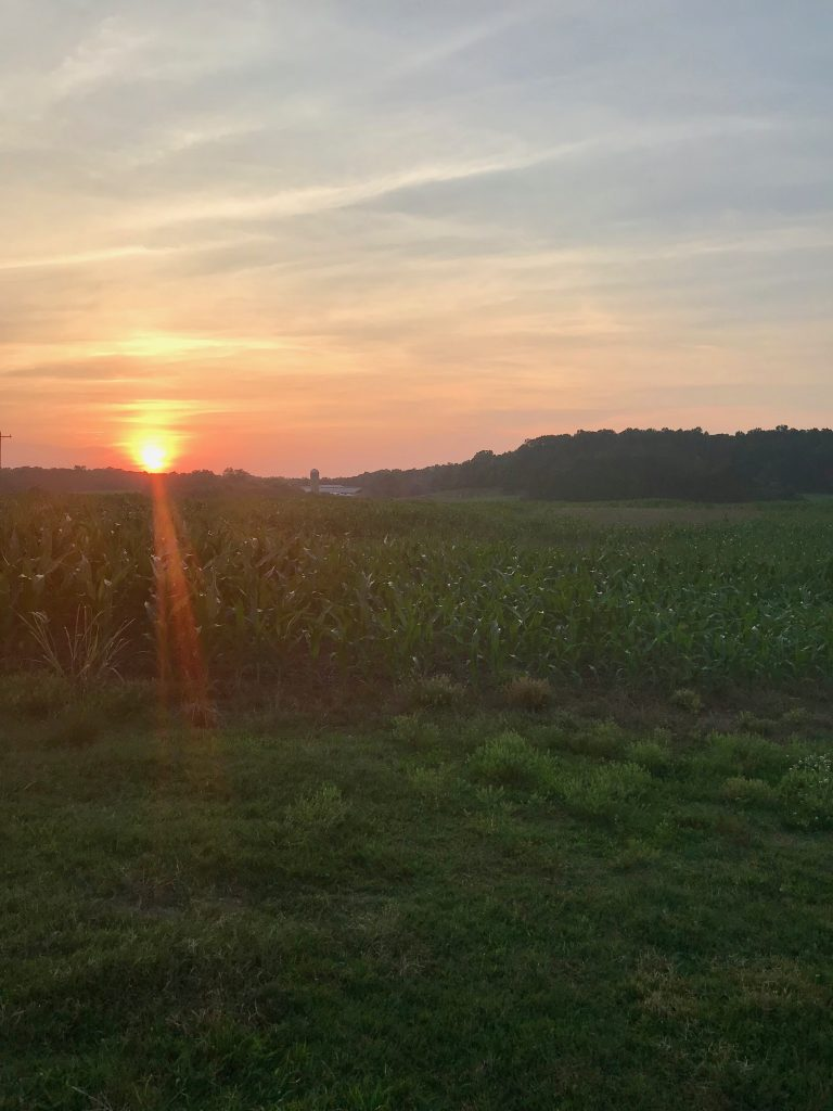 Sunset at Maple View Farm