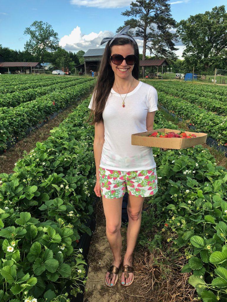 strawberry patch visit 2019