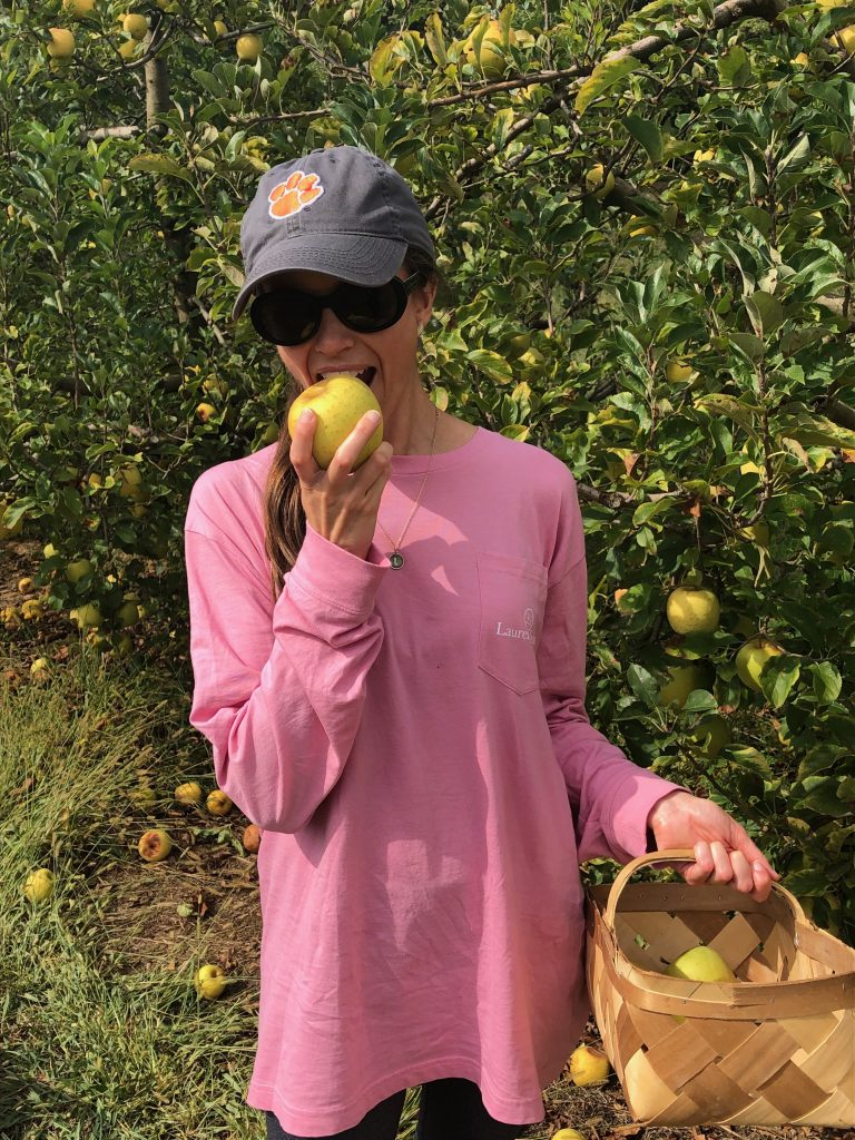 Apple Picking in North Carolina Mountains
