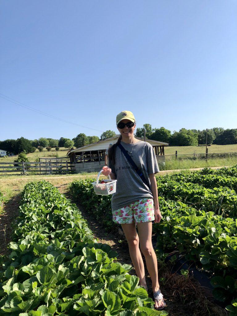 Lilly Pulitzer strawberry shorts